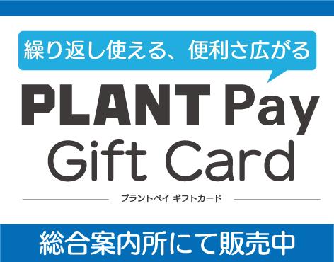 PLANTPayギフトカード_メイン画像.jpg