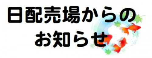 日配売場(夏ver).jpg